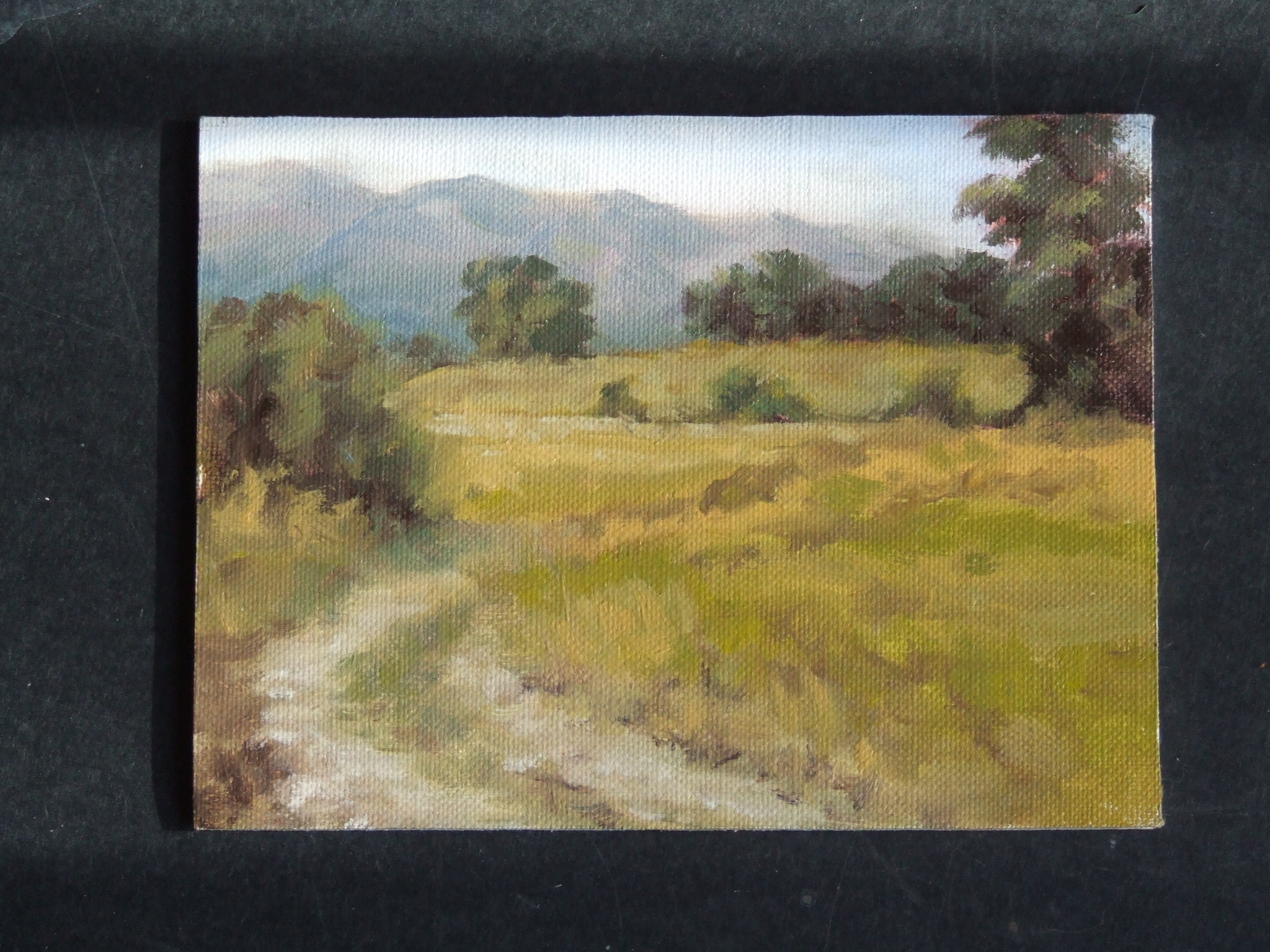 july2009-pleinair-southpark