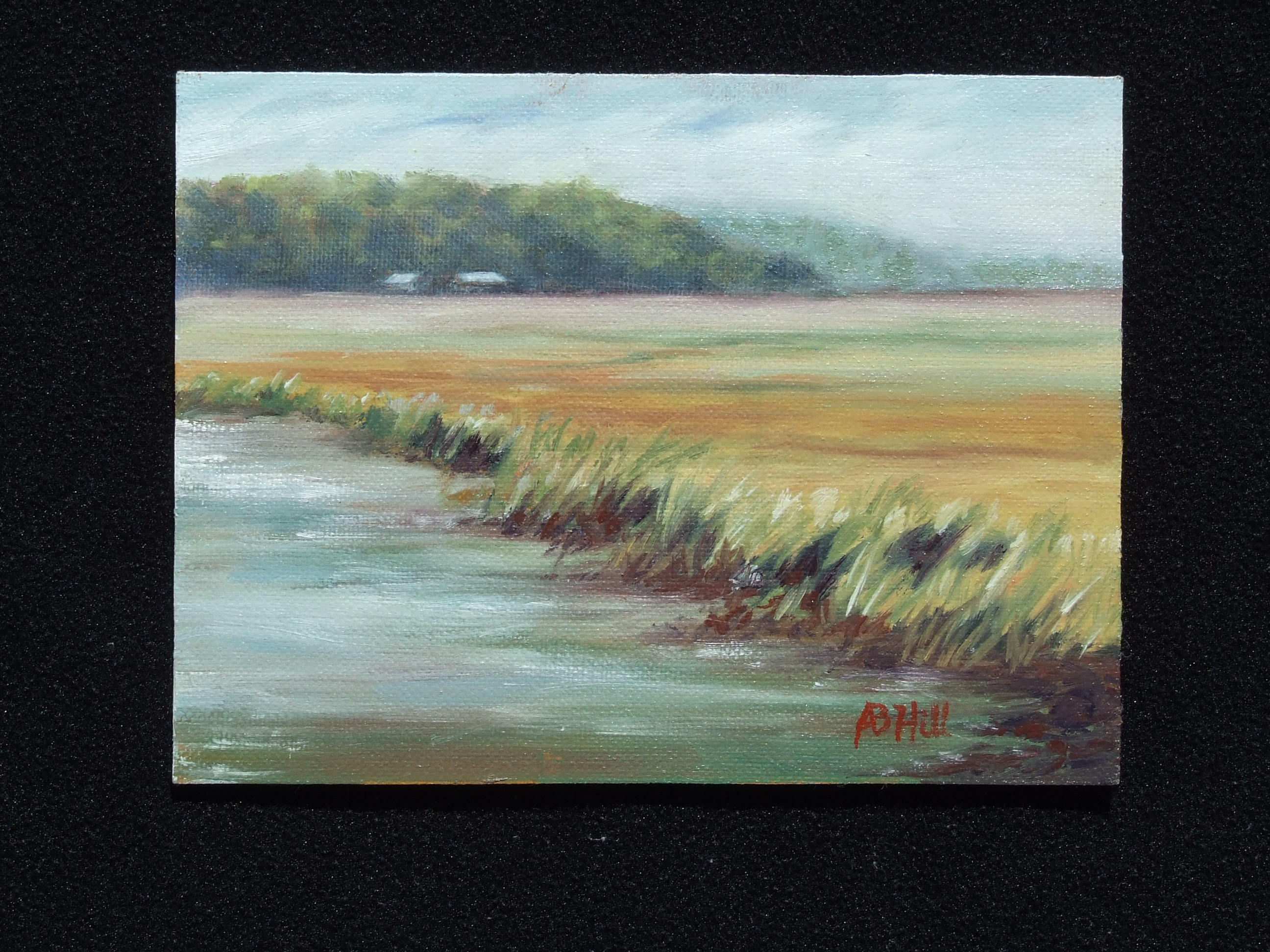 sapelo-marsh-oil